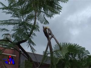 foto maltempo ciclone due