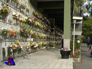 immagine cimitero comunale